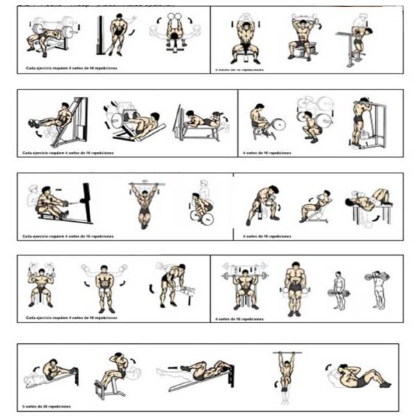 برنامه تمرینی بدنسازی ویژه
