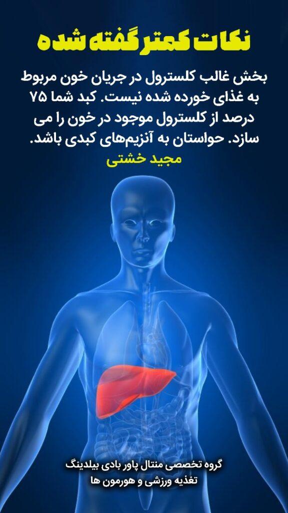 بخش غالب کلسترول در جریان خون مربوط به غذای خورده شده نیست. کبد شما 75 درصد از کلسترول موجود در خون را میسازد. حواستان به آنزیمهای کبدی باشد.بخش غالب کلسترول در جریان خون مربوط به غذای خورده شده نیست. کبد شما 75 درصد از کلسترول موجود در خون را میسازد. حواستان به آنزیمهای کبدی باشد.